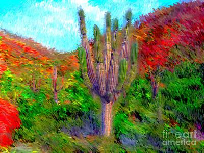 Espiritu Santo Cactus 2 Art Print by Gerhardt Isringhaus