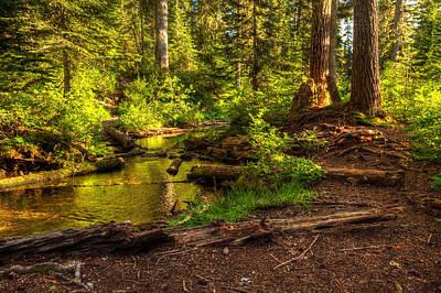 Photograph - Essence Of Summer by Joshua Cramer