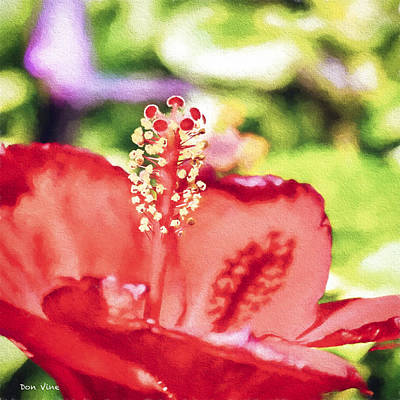 Photograph - Essential Hibiscus by Don Vine