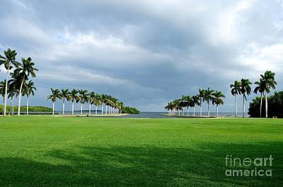 Photograph - Estate Lawn by Andres LaBrada