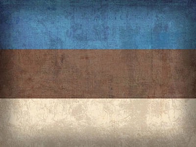 Estonia Flag Vintage Distressed Finish Art Print by Design Turnpike