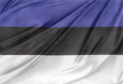 Waving Flag Photograph - Estonian Flag by Les Cunliffe