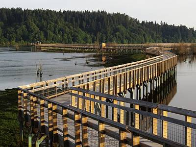 Digital Art - Estuary Boardwalk . . Nisqually Nwr by I'ina Van Lawick