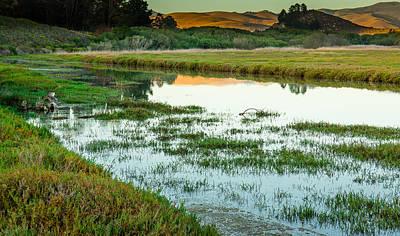 Photograph - Estuary Reflections....  Morro Bay by Tim Bryan