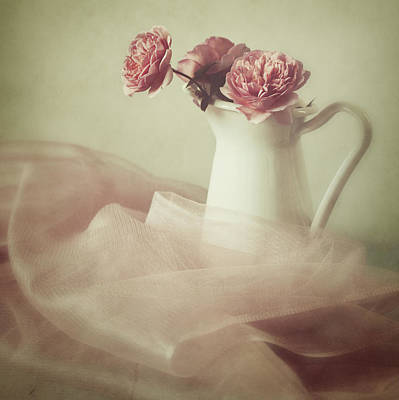 Old Pitcher Photograph - Ethereal by Amy Weiss