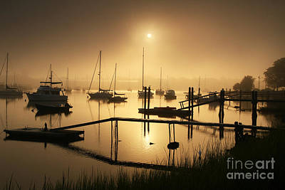 Photograph - Ethereal Morning by Butch Lombardi