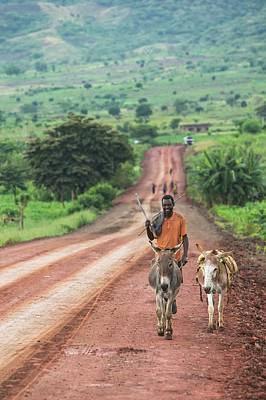 Ethiopian Farmer Walking Donkeys Art Print by Peter J. Raymond