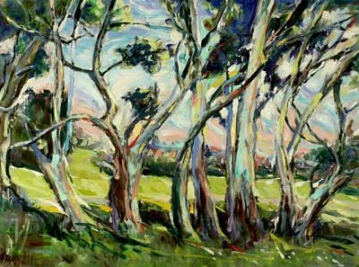 Eucalypts In Jacob's Creek Art Print