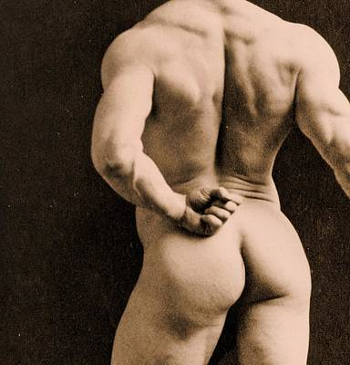 From Behind Photograph - Eugen Sandow by Napoleon Sarony