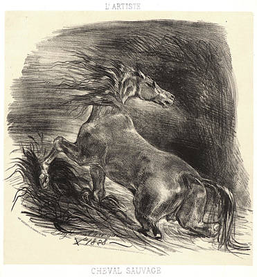 Wild Horses Drawing - Eugène Delacroix French, 1798 - 1863. A Wild Horse by Litz Collection