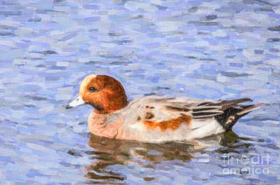 Digital Art - Eurasian Wigeon by Liz Leyden
