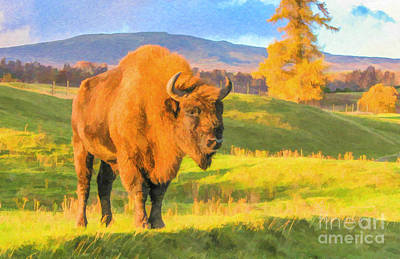 Digital Art - European Bison by Liz Leyden