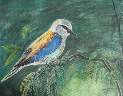 Painting - European Roller by Usha Rai