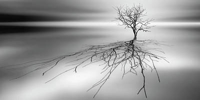 Lonely Tree Photograph - Even The Dead Cast Shadows by Leif L?ndal