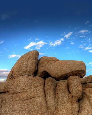 Joshua Tree Photograph - Even The Rocks Collet Shoes by Ron Clark