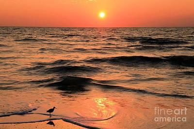 Photograph - Evening Beach Stroll by Adam Jewell