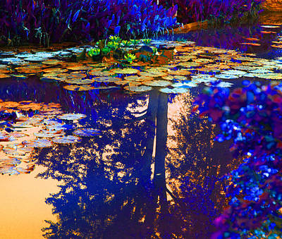 Evening Glow On The Lily Pond Original