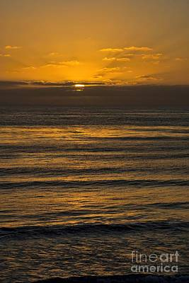 Photograph - Evening Glow by Peggy Hughes