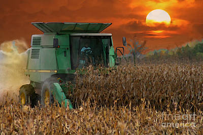 Evening Harvest Art Print