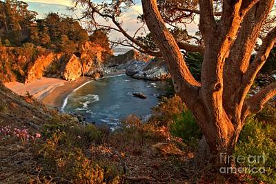 Photograph - Evening Light At Pfeiffer Burns by Adam Jewell