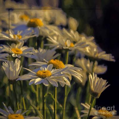 Photograph - Evening Light by Jean OKeeffe Macro Abundance Art