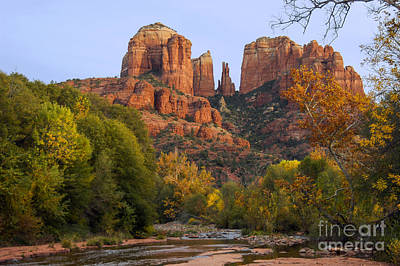 Evening Light On Cathedral Rock Art Print by Bob Phillips