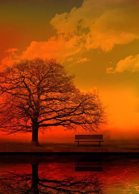 Oak Photograph - Evening by Mark Rogan