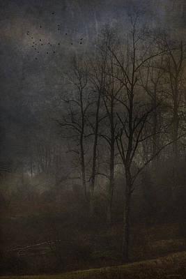 Evening Mist Art Print by Ron Jones