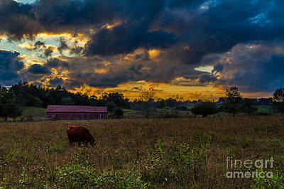 Photograph - Evening On The Farm One by Ken Frischkorn