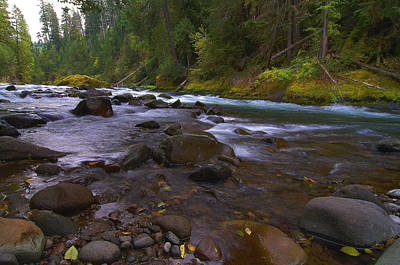 Evening On The Santiam River Art Print