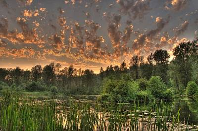 Photograph - Evening Pond by Jeff Cook