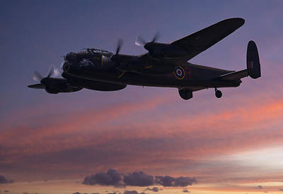 Photograph - Evening Raider by Andy Myatt