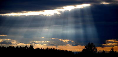 Photograph - Evening Rays by Kathy Sampson