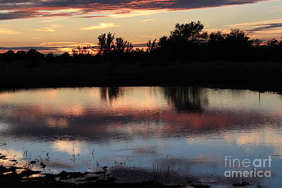 Photograph - Evening Reflection by Robert D  Brozek