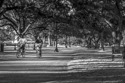 Photograph - Evening Ride Through The Park by David Morefield