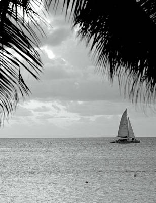 Photograph - Evening Sail In Paradise by Caroline Stella