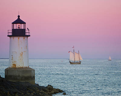 Evening Sail On The Harbor Art Print