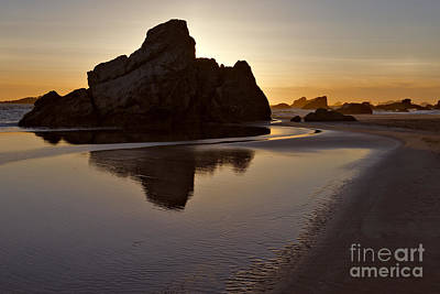 Photograph - Evening Serenity - Oregon by Sandra Bronstein