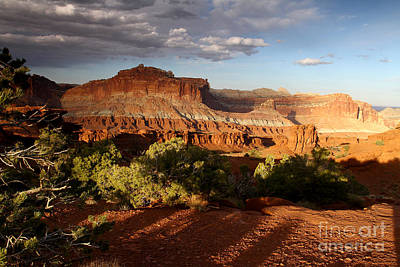 Photograph - Evening Shadows Capitol Reef National Park by Butch Lombardi