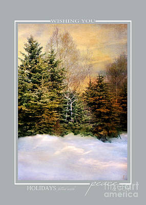 Photograph - Evening Snow Winter Landscape Christmas Cards by Jai Johnson