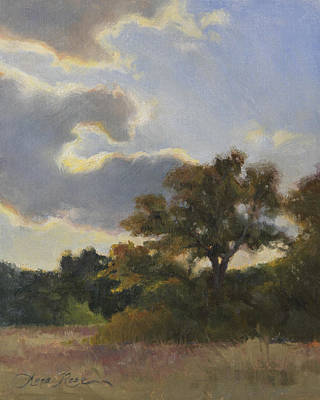 Meadows Painting - Evening Summer Clouds by Anna Rose Bain