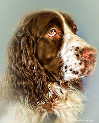 Ever Watchful English Springer Spaniel Art Print