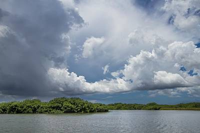 Everglades 0257 Art Print by Rudy Umans