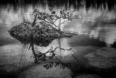Photograph - Everglades 0346 by Rudy Umans