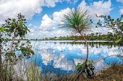 Photograph - Everglades 0352 by Rudy Umans