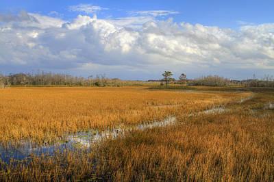 Everglades Clouds Print by Debra and Dave Vanderlaan