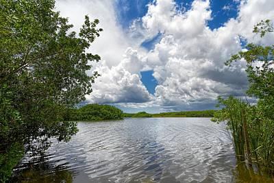 Everglades Lake - 0278 Art Print by Rudy Umans