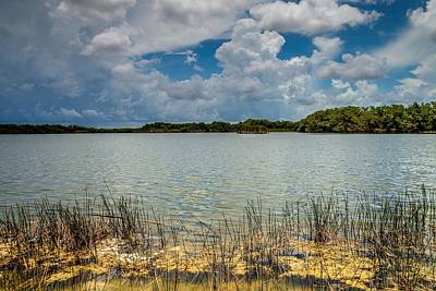 Photograph - Everglades Lake 6930 by Rudy Umans