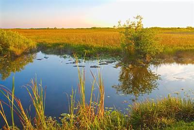 Photograph - Everglades Landscape-10 by Rudy Umans