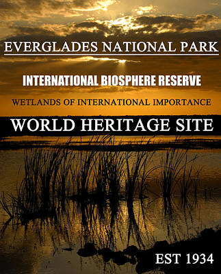 Photograph - Everglades Np Poster A by David Lee Thompson